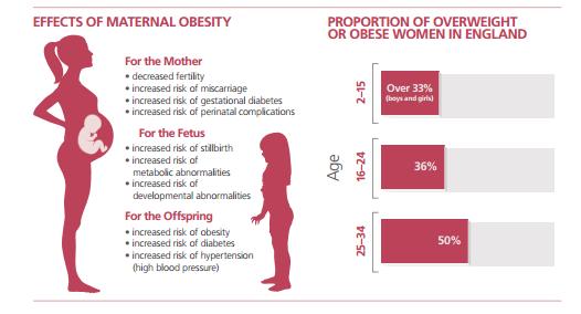 maternal obesity
