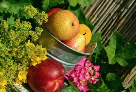 fruits-850491_960_720.jpg