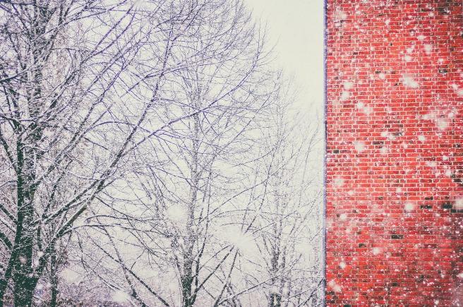snow-2616580_1920.jpg