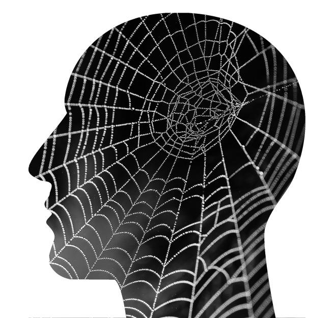 mental-health-2313432_1920