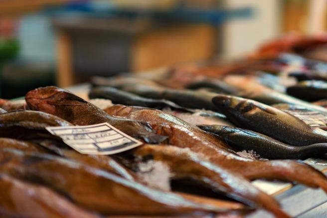 fish-market-3408397_1920
