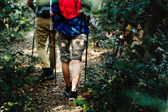 activity-adults-adventure-1246955