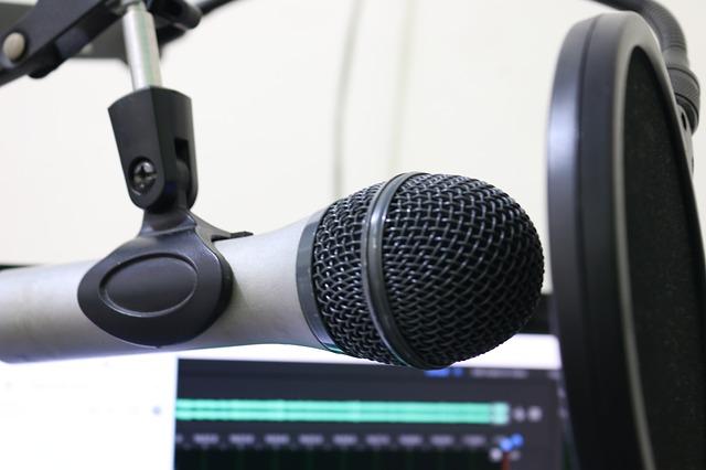microphone-2170049_640.jpg